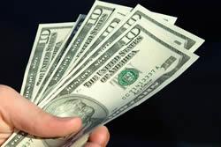Вечнозеленый доллар США