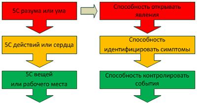 Правильно встроенные два типа 5С в организацию