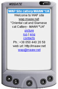 wap-сайт картинок